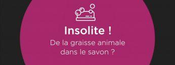 CAPTURE_EUCDO_2020-09-SEPTEMBRE_En_un_clin_d_oeil-Aux_origines_du_savon_de_la_graisse_animale_V1