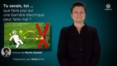 Capture_A_2020-10-15_ Tu savais, toi … que faire pipi sur une barrière électrique peut faire mal ? _V3