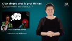 BA_POSTDIFF_A_2020-09-08__C_EST_SIMPLE_AVEC_LE_PROF_MARTIN_-_Le_sommeil_des_oiseaux