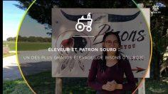 CAPTURE_Éleveur_et_patron_sourd_Un_des_plus_grands_élevages_de_bisons_d_Europe_V1